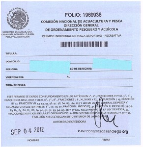mexican-fishing-license-291x300