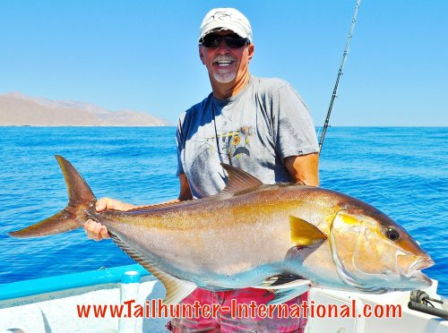 amberjack small tags roger thompson 4-15